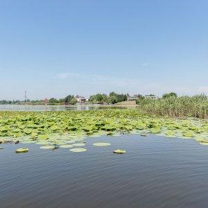 Teren pe malul lacului Snagov, Zorelelor.